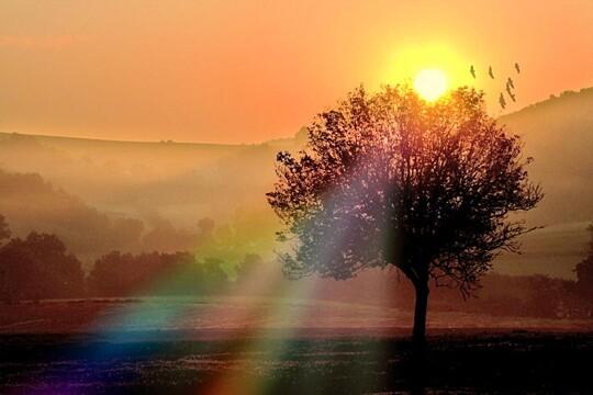 lever-soleil-campagne-423723