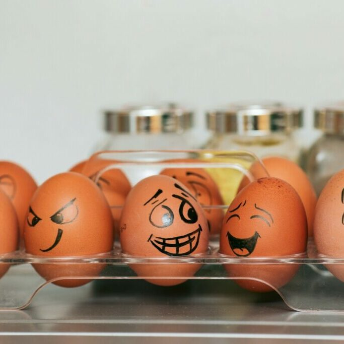 orange and white egg on stainless steel rack